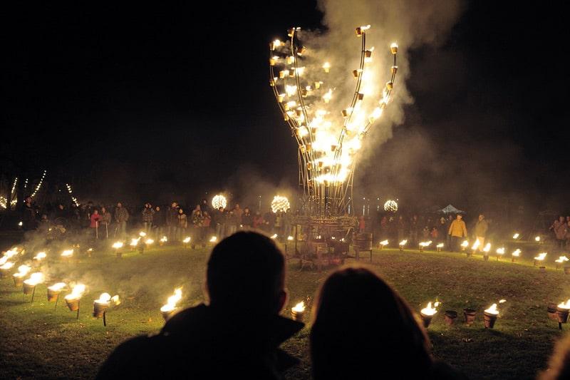 """Lyon Festival of Lights in """"Parc de la Tete d'Or"""""""