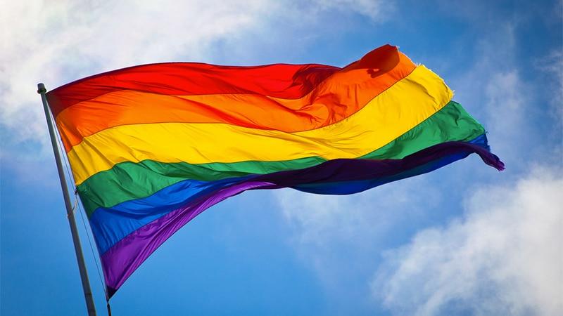 2018 lesbian and gay pride parade in lyon