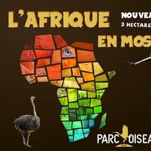 afrique en mosaique at parc des oiseaux 2018