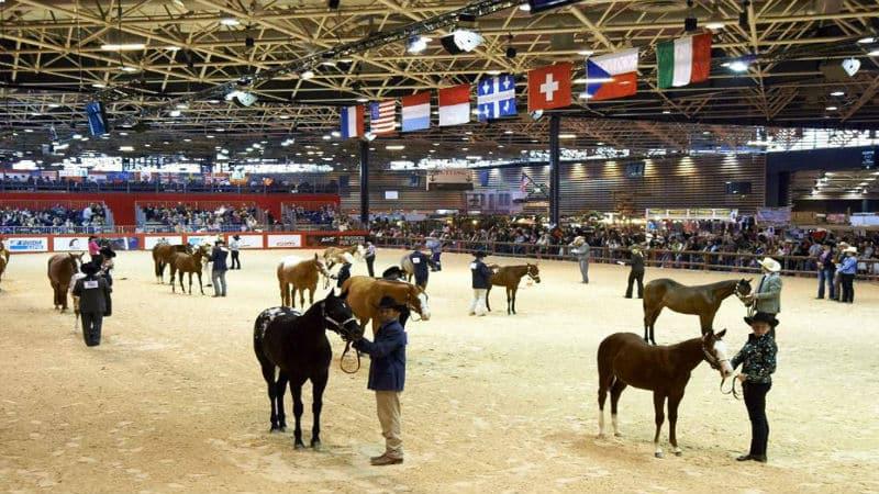 Horse riders at Equita Lyon festival 2018