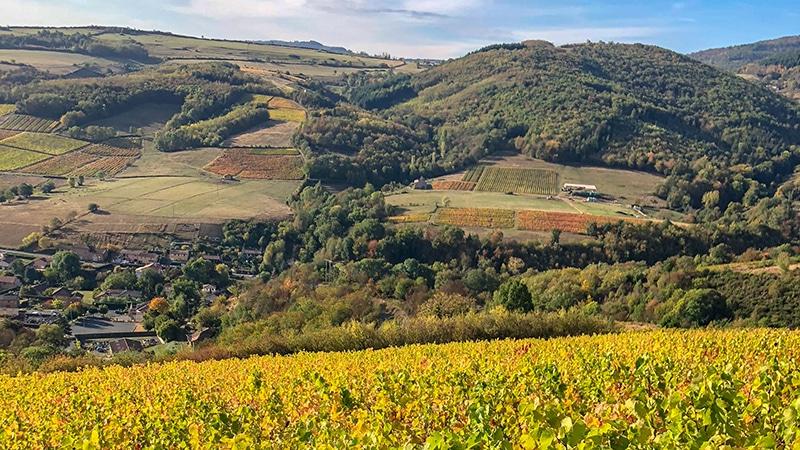 Beaujolais landscape near Lyon